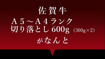 佐賀牛A5〜A4切り落とし600g