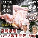 バーベキュー 肉 美味しい