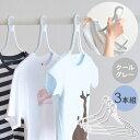 【10%OFF】Tシャツ を簡単に干せる 洗濯ハンガー 3本セット【クールグレー】ツウィンモール キャッチタイプ シンプル s26i49 1