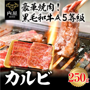焼肉 焼肉セット 国産 黒毛和牛 A5等級 カルビ 250g