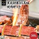 焼肉 焼肉セット 国産 黒毛和牛 福袋 A5等級 カルビ ロース セット 500g 送料無料