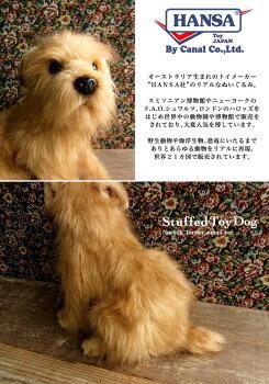 犬ぬいぐるみノーフォークテリア