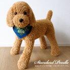 ぬいぐるみ犬リアルスタンダードプードル【特大!スタンダードプードルのぬいぐるみ(アプリコット)】ご予約受付中!(発送は11月上〜中旬の予定です。)