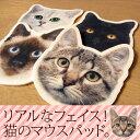 可愛い猫のマウスパッド
