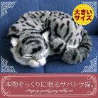 新商品《5月中旬から販売予定です。》【本物そっくりに眠るサバトラ猫(大)のぬいぐるみ】パーフェクトペット|猫のぬいぐるみ|動くぬいぐるみクリスマス|誕生日|プレゼント|ギフト|お見舞い【N-UC-C】