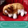 【本物そっくりに眠るシェルティのぬいぐるみ】パーフェクトペット|犬のぬいぐるみ|動くぬいぐるみ|誕生日|クリスマス|プレゼント|ギフト|お見舞い|ペットロス