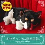 【本物そっくりに眠る黒柴犬のぬいぐるみ】パーフェクトペット|犬のぬいぐるみ|動くぬいぐるみ|誕生日|クリスマス|プレゼント|ギフト|お見舞い|ペットロス