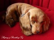 【本物そっくりに眠るダックス(スムース)のぬいぐるみ】パーフェクトペット|犬のぬいぐるみ|動くぬいぐるみ|クリスマス|誕生日|プレゼント|ギフト|お見舞い