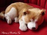 本物そっくりに眠るぬいぐるみパーフェクトペット【柴犬】リアル 犬 動く ぬいぐるみ ギフト プレゼント 誕生日 クリスマスお見舞い ペットロス
