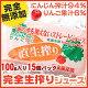 完全生しぼり・無農薬にんじんジュース☆りんご果汁6%入り☆15個セット☆100g入り【完熟…