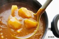 日本スープの有機野菜ポタージュのカレー隠し味の料理例です。無添加、無脂肪の美味しいポタージュです。離乳食、介護食にもお薦めです。