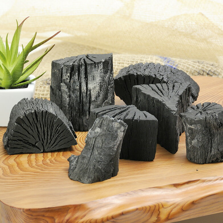 伊佐樫黒炭 株式会社古川 鹿児島県 南九州産樫原木の良質な樫黒炭(10kg)。樫木炭100%です。