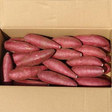サツマイモ 熊本県産 シルクスイート 国産野菜 さつまいも 産地直送 焼き芋 A等級 Lサイズ 5kg 九州産 株式会社サラダファイブ 岐阜県 ※期間限定商品
