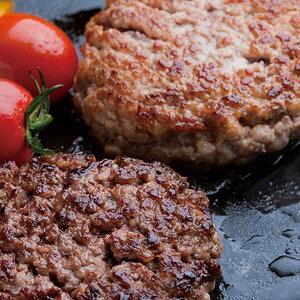 ドライエイジングビーフ ハンバーグ レトルト 4個 480g 熟成肉 国産 牛肉 熟成 冷凍 お祝い グルメ 株式会社さの萬 静岡県