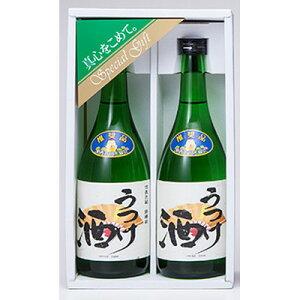 お酒 日本酒 織田信長生誕の地とされる愛知県愛西市の酒蔵が造り上げた うつけ酒 特別純米酒・原酒 720ml 2本セット