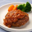 やわらかハンバーグセット 一力屋 ハンバーグ 詰め合わせ 岐阜県産 豚肉 惣菜 冷凍 国産 お弁当 おかず 卵不使用