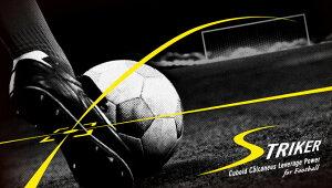 BMZインソールサッカー