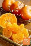 kanpei