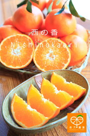 nishinokaori