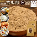 雑穀 送料無料 国産 玄米粉 1kg(500gx2) [ 雑穀 国内産 玄米 うるち米 粉末 ] 送料無料 訳あり 食品 大容量