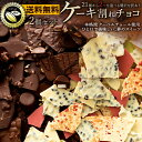チョコレート 送料無料 訳あり スイーツ 割れチョコ 21種
