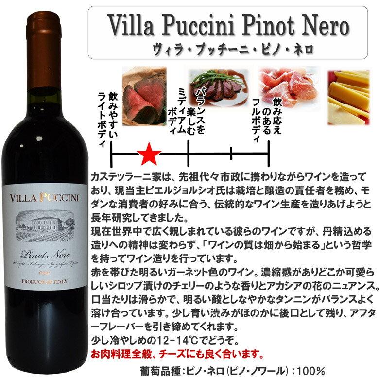 厳選チリイタリアピノノワール2本飲み比べセット【2本セットワイン】