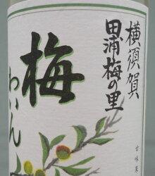 梅ワインラベル