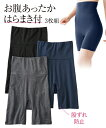 Rhonda 衣類 下着 Shear Pin-up Girl Women's Multi/Blue/Pink/Brown Lace Control Panty