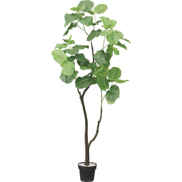 QLグリーン(ウンベラータ)ニトリ【玄関先迄納品】おしゃれインテリアファブリックフェイクグリーン人工観葉植物造花