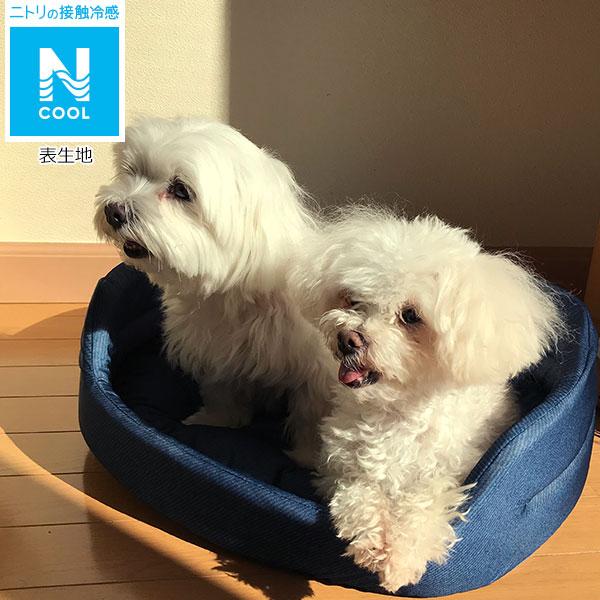 犬・猫用ペットベッド(NクールH マルカベ)