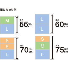 クローゼット衣装ケース6個セット(セレスFDクローゼットSH20)ニトリ【送料有料・玄関先迄納品】【新生活】