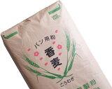 香麦(春よ恋ブレンド) 業務用 25Kg /パン用小麦粉 【江別製粉 北海道産小麦 ハルヨコイ はるよこい 強力粉】
