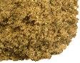 nK-Organicオーガニック・ガラムマサラ 20g