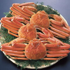加能蟹(かのうがに)とは石川県で獲れたずわい蟹のこと。獲れたてのズワイガニをお届けいたし...