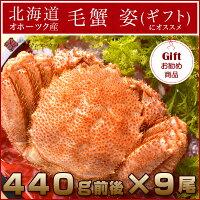 北海道オホーツク産毛蟹姿大サイズ1尾440g前後(シュリンク包装)×9尾