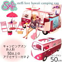 Steffi love hawaii camping van...