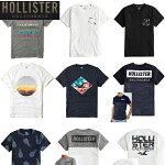 ホリスターメンズTシャツ正規Hollister
