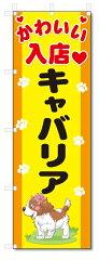 のぼり旗 キャバリア (W600×H1800)[のぼり君]