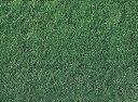 西洋芝の種GP健太くん1200g18坪(60平方メートル)分