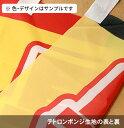 のぼり旗 ひなまつり 赤 0180663RIN Rのぼり (棒袋仕様) 2