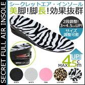 シークレット フル エア インソール 2way 5カラー 2段階 調節 中敷 メッシュ ファー SECRET FULL AIR INSOLE レディース メンズ