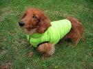 超小型犬サイズ・ダウンジャケット,アウター