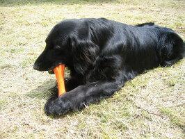 大型犬用おもちゃ・丈夫・頑丈
