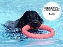 丈夫 おもちゃ 犬 PitchDog 30サイズ PULLER ピッチドッグ 中型犬 大型犬 頑丈【あす楽_土曜営業】 長持ち リング 輪っか 水に浮く トレーニング 水遊び トイ プラー レトリバー 楽天ランキング入り ラブラドール ゴールデン フラットコーテッド レトリーブ ボーダー
