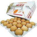 味宝卵 40個入り