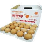 【農場直送☆福岡県鞍手産】新鮮たまご味宝卵60個入り(破損保証10個含む)