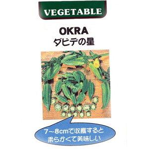 オクラ 種 【 ダビデの星 】 種子 小袋(約2ml(約20粒)) ( 種 野菜 野菜種子 野…