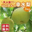三重県産 山口さんの幸水梨 3kg