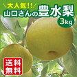 三重県産 山口さんの豊水梨 3kg