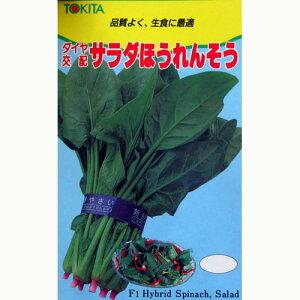 サラダほうれんそう (ホウレンソウの種) 1dl